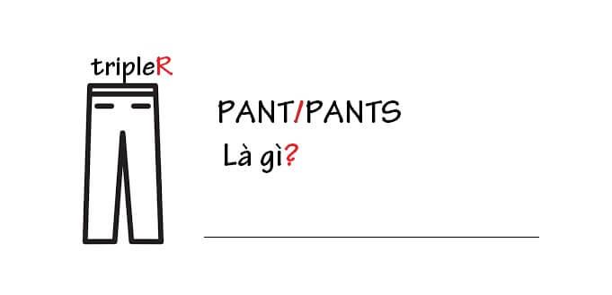 """Pant là gì? Tìm hiểu về """"pants"""" trong thời trang"""